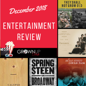 December 2018 entertainment review. Check out December's best and worst books, television and movies. Be sure to tell me your favorites in the comments. | www.grownupdish.com